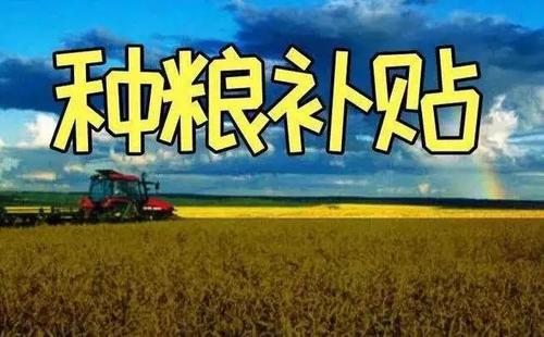 2021年国家粮食补贴新消息 2021年粮补多少钱一亩?