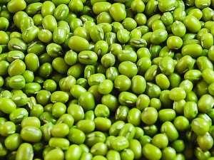 2021年2月24日全国部分地区今日绿豆价格行情