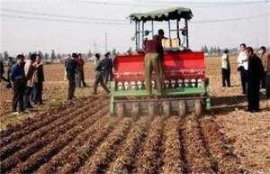 小麦播种过深该如何补救?