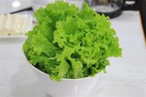 最常见青菜有哪些,盘点十种常见青菜