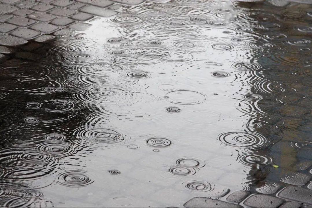 9月份气候预测!多地降水偏多